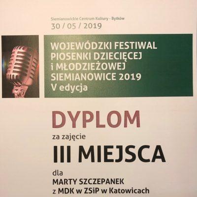Dyplom - Marta Szczepanek